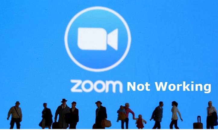 zoom not working